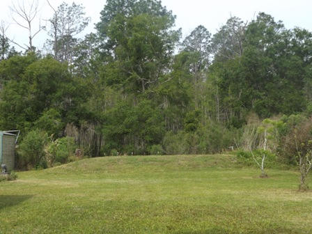 9805 Baylor Ave Hastings Fl 32145 Alan Gray Realty